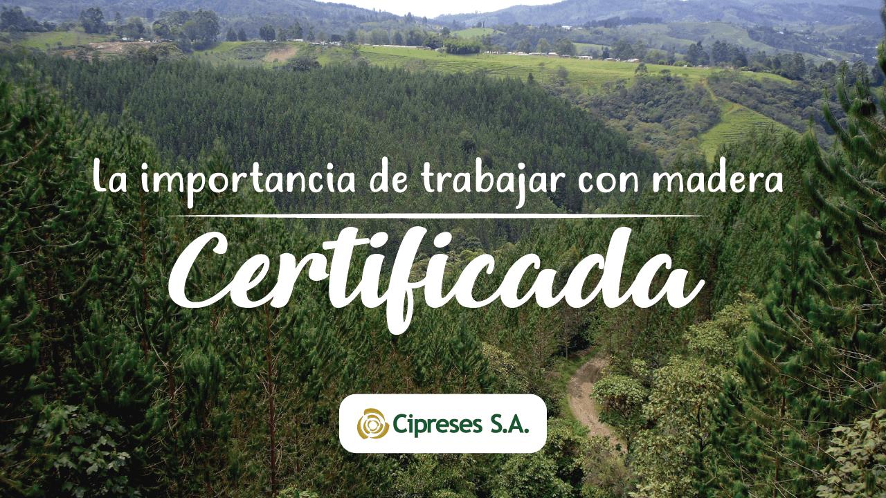 La importancia de que nuestra madera esté certificada