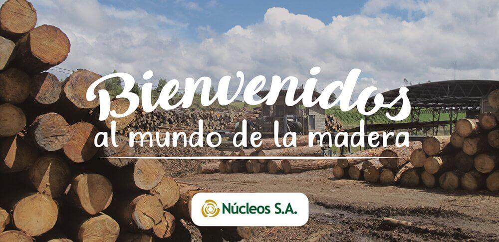 ¡Bienvenidos al mundo de la madera más confiable!